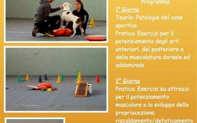 Stage sulla preparazione atletica del cane